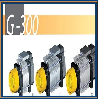 <h4>دانلود کاتالوگ موتور Sassi G-300</h4>